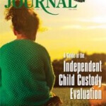 Independent Child Custody Evaluation